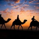 morocco-tours-from-fes-sahara-desert-trip-from-fes-camel-trekking