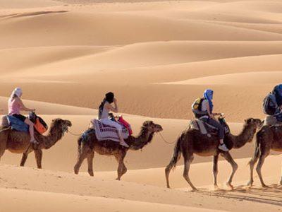 morocco-tours-from-fes-sahara-desert-trip-from-fes-camel-trekking-camel-ride