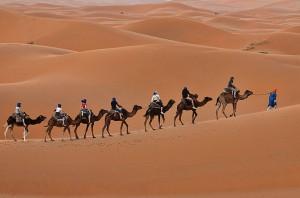 camel-trekking-merzouga-morocco-travel-moroccofortravel